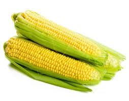 Corn   Nutrition Assessment Clinic